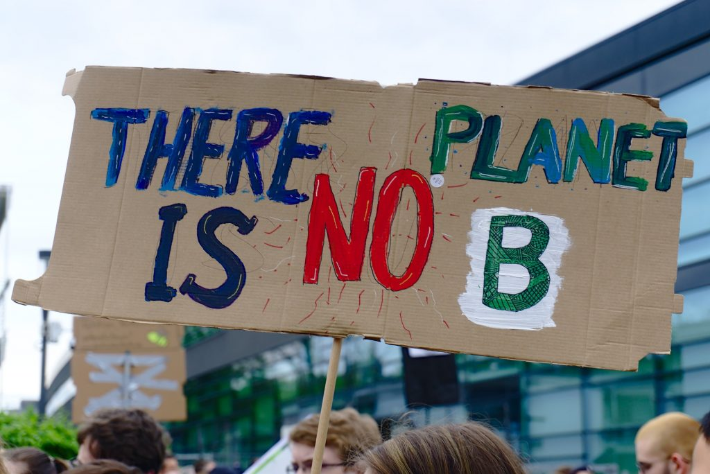 "Plakat bei einer Fridays for Future Demo mit der Aufschrift ""There is no Planet B"""
